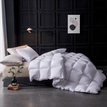 鴻潤の優雅な宝物は芯の家に紡ぐ全綿の90%の白アヒルの绒に軽く保温されてダブルの羽毛布団に冬掛け布団の白色の冬の金の220 x 240 cm